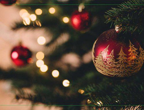 Beperkt geopend tijdens kerstvakantie | Weegtechniek Holland